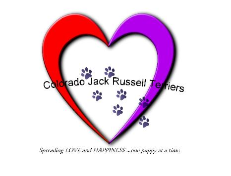 Colorado Jack Russell Terrier Logo