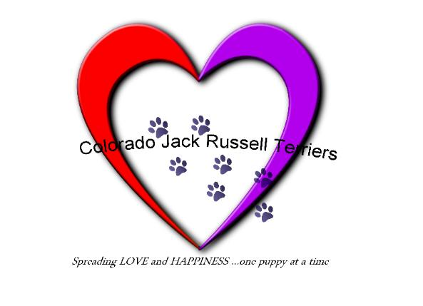 Colorado Jack Russell Terrier business logo